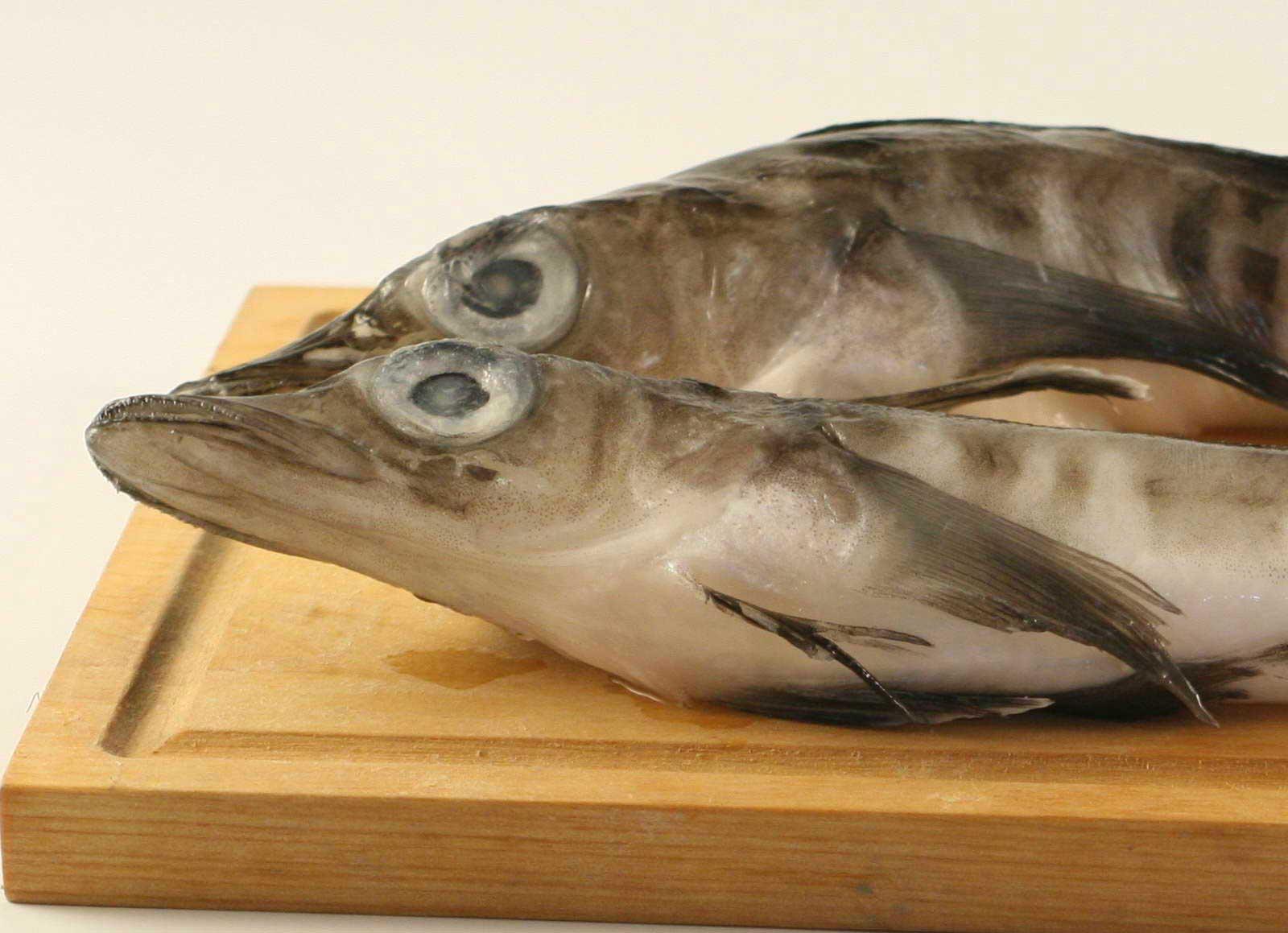 Рыба в детском рационе питания